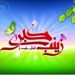 hazrate-zeinab-18_thumb.jpg